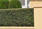 Aranda Privacy screens 30